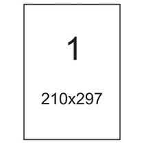 Самоклеящаяся этикетка A4 210х297