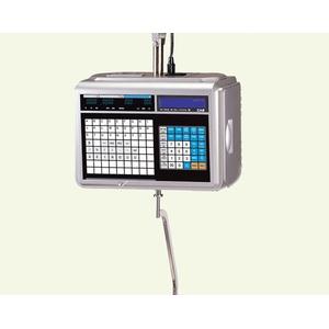 Весы с печатью чека CAS CL5000J-IH
